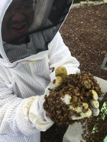 Tyler, pioneering his 'bee facial' spa technique.